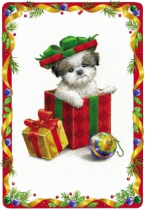 No Pets As Presents At Christmas Crossroads Shih Tzu Rescue