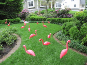 flamingo yard